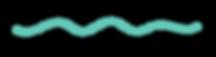 WorkBook_Assets_Aqua Squiggle Line.png