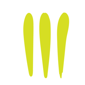 WorkBook_Assets_Thre Lime Lines.png