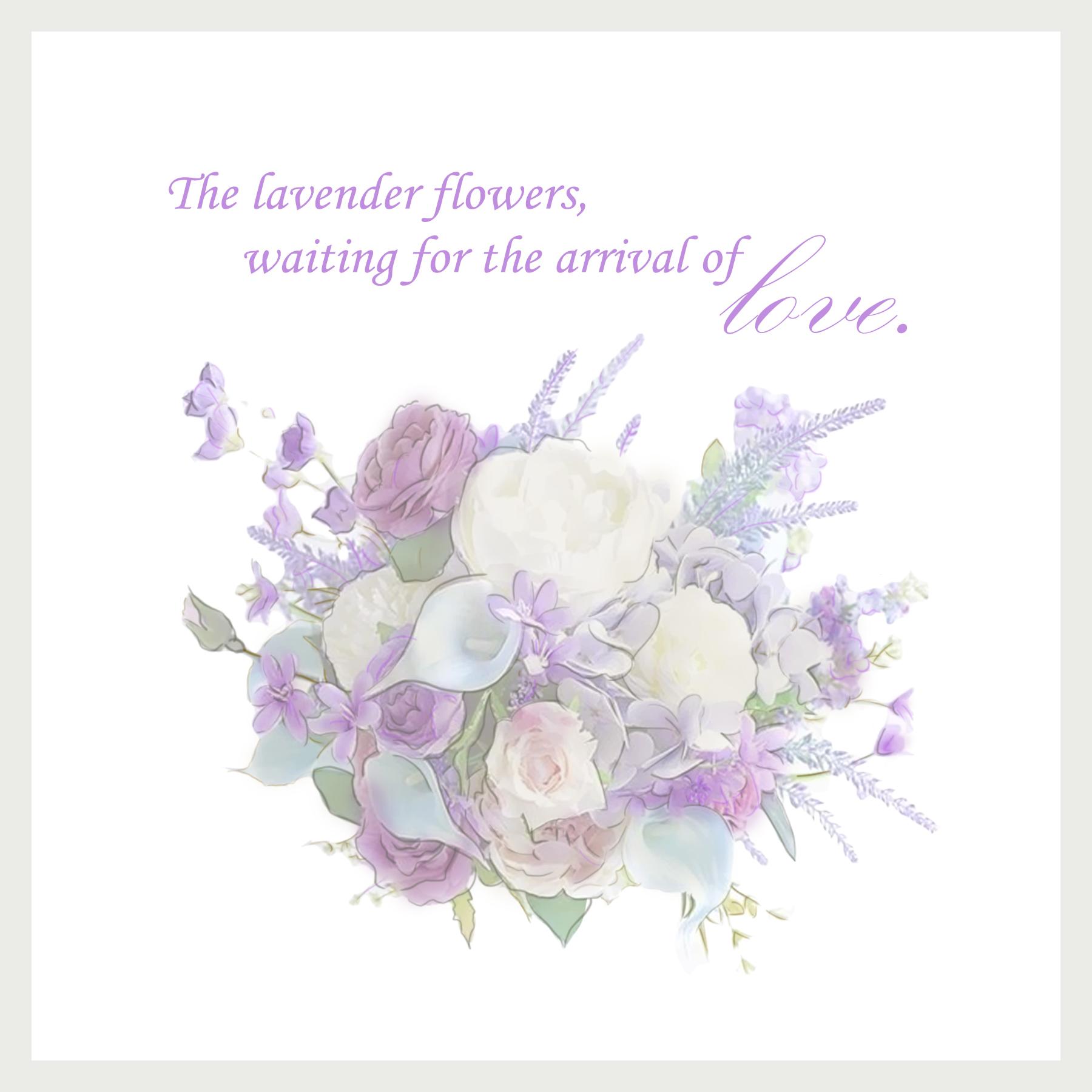 20190629_lavender