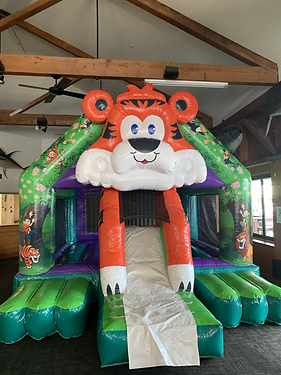 Tiger bouncy castle.HEIC