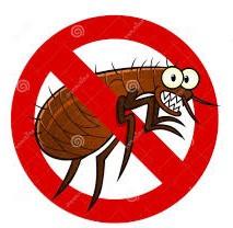 #bug&tickrepellent