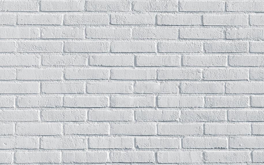 white-4621828.jpg