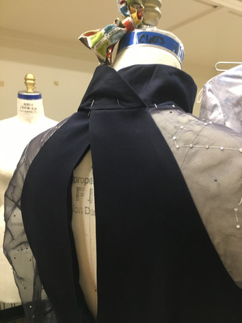 Starlight Dress back view