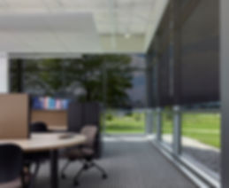 Lutron Business Office Motorized Shades.