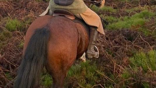 Teenage ThiDri Riding Apron
