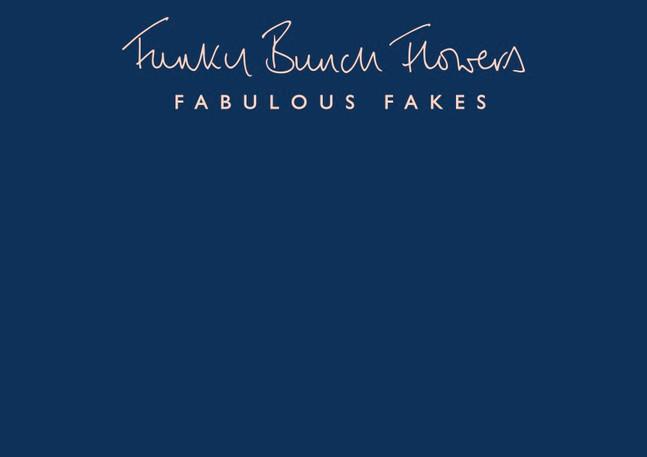 Funky_Bunch_Brand_Guidlines 9_10_20 1.jp