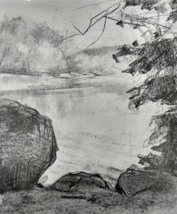 Bug River / Graphite on Paper