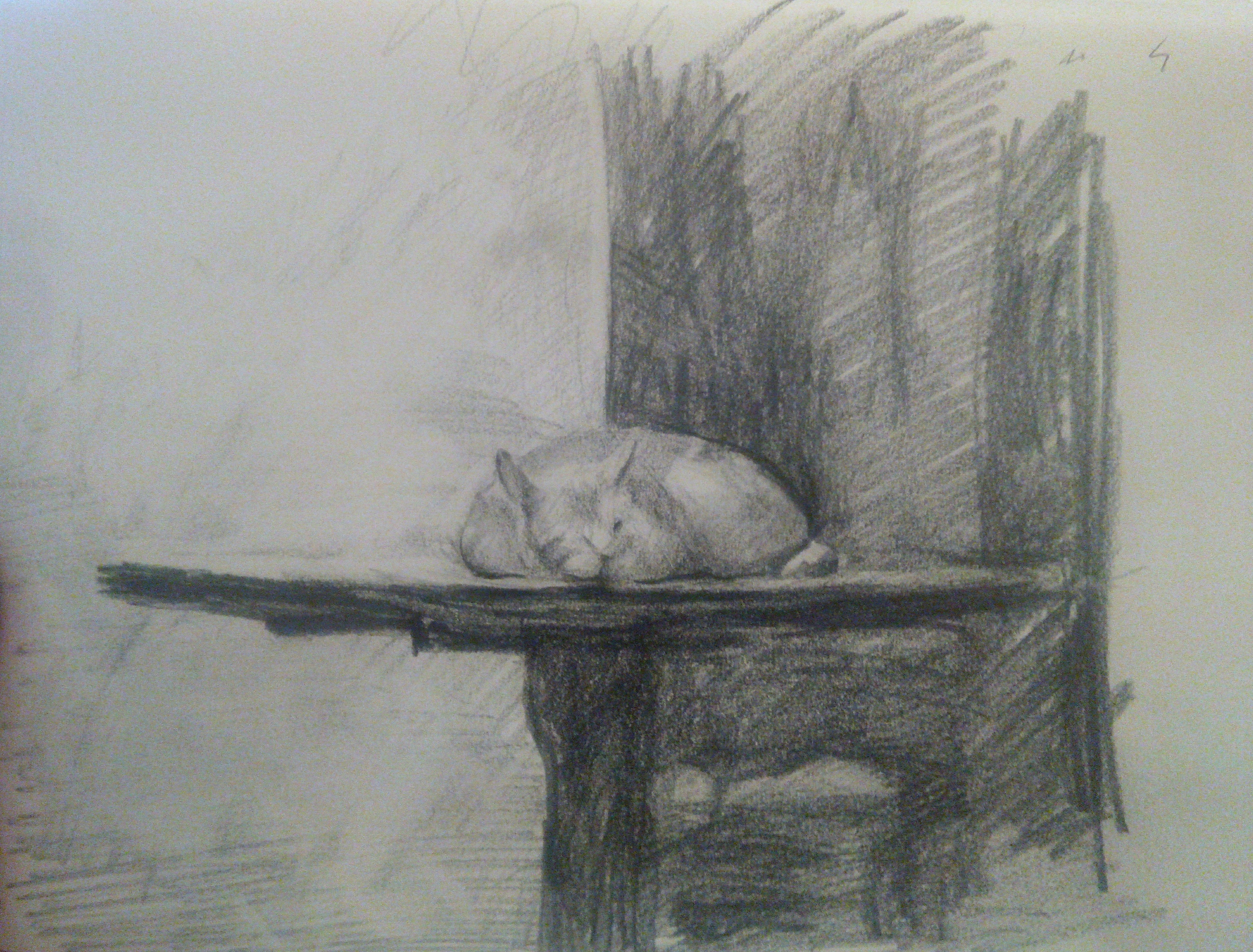 Cat on Table / Pencil on Paper