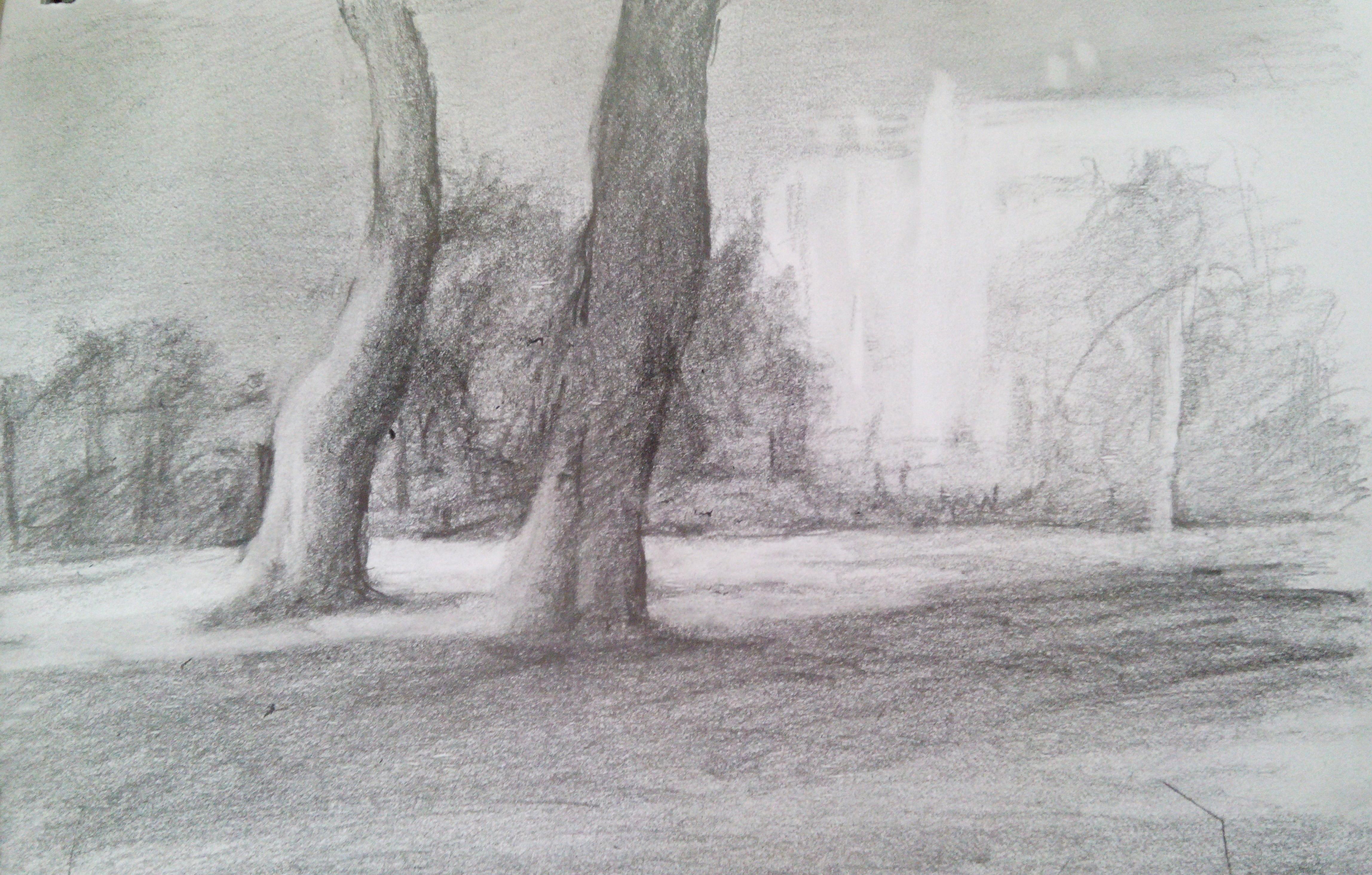 Jerusalem Park / Pencil on Paper