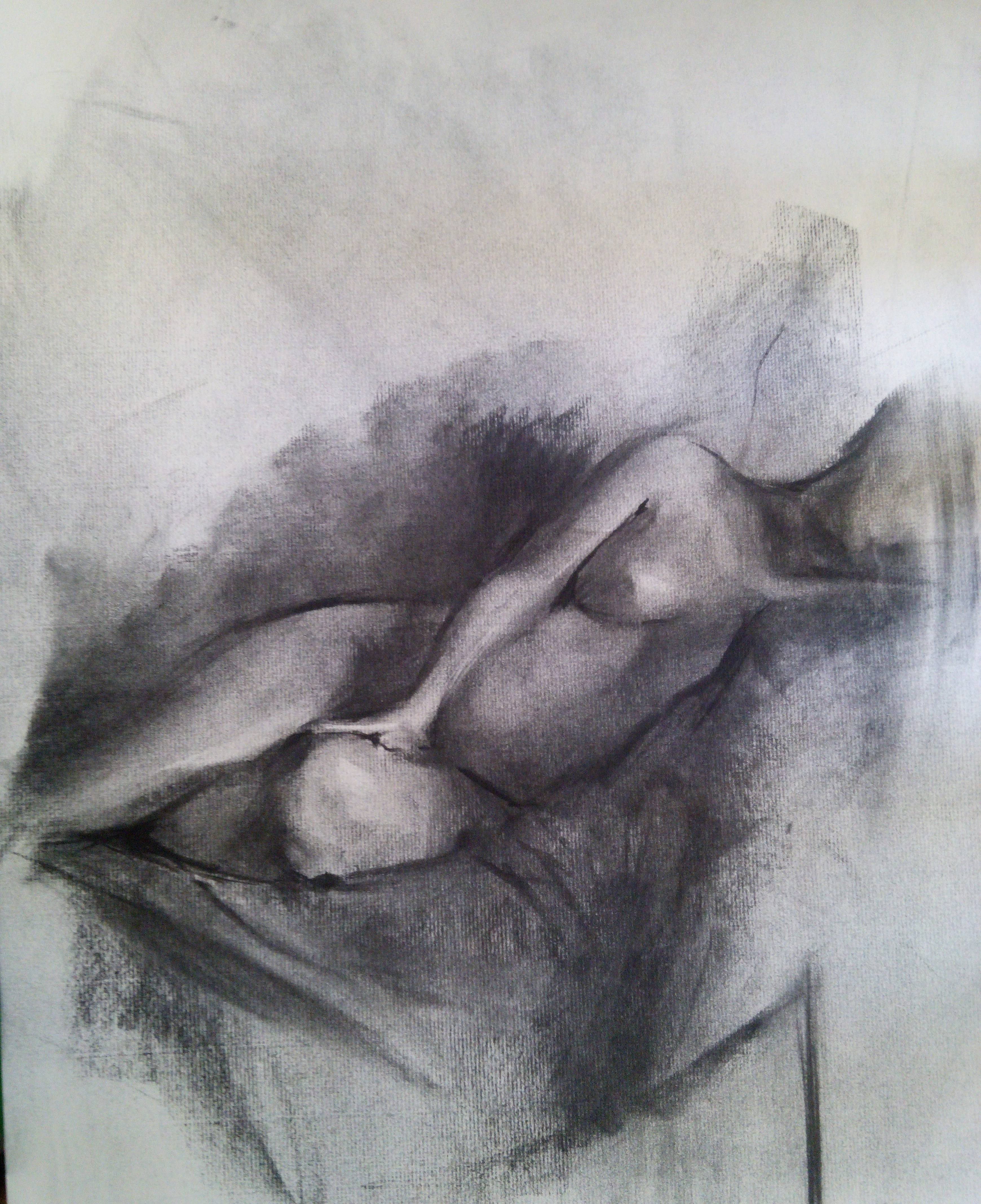 Reclining Nude / Charcoal on Paper