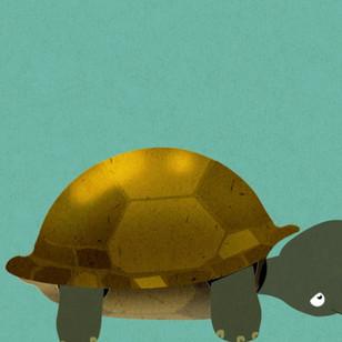 Cyber Tortoise