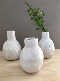 Eucalypt Vases