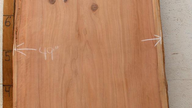 Redwood - Oldgrowth