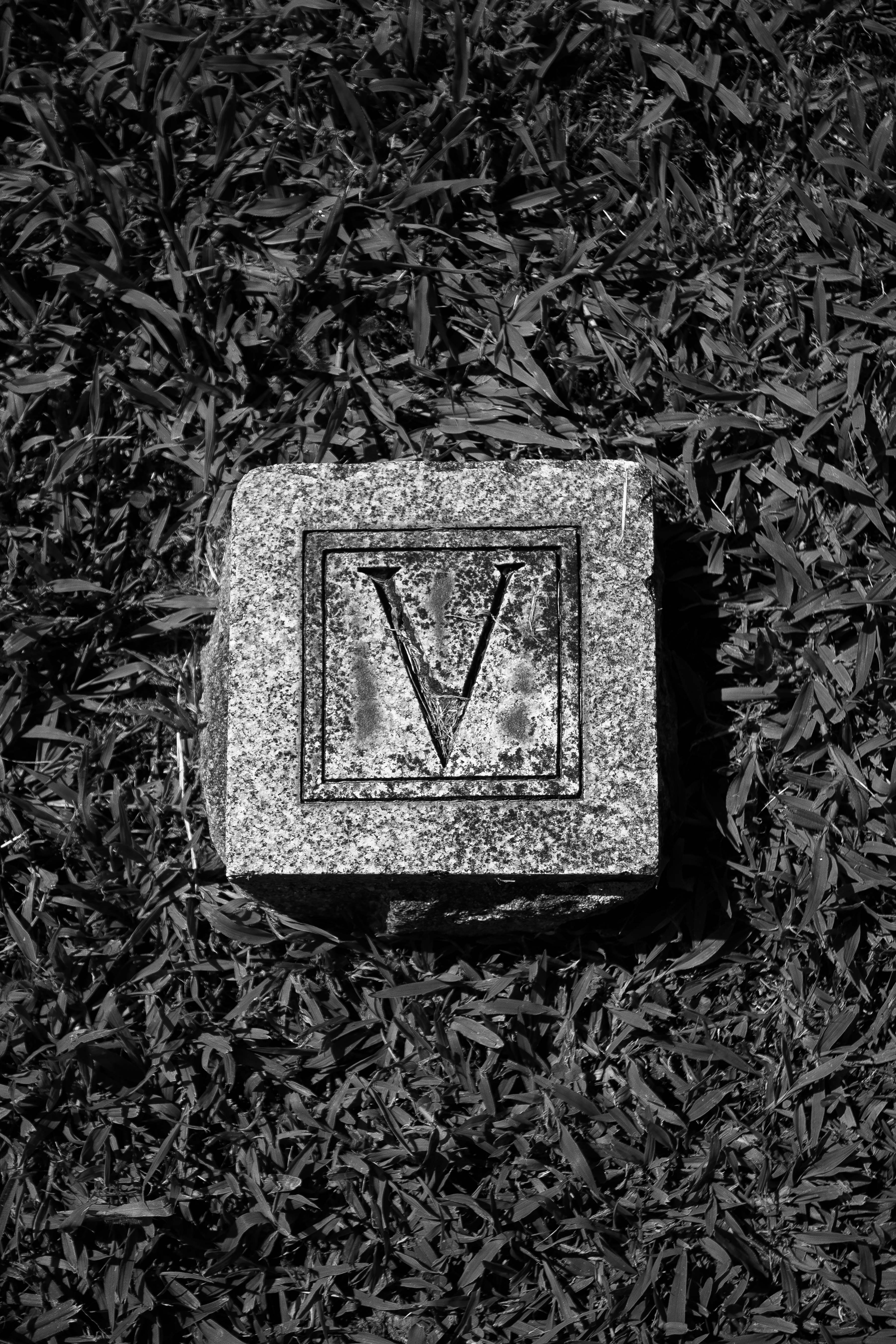 Brought to you by the Letter V