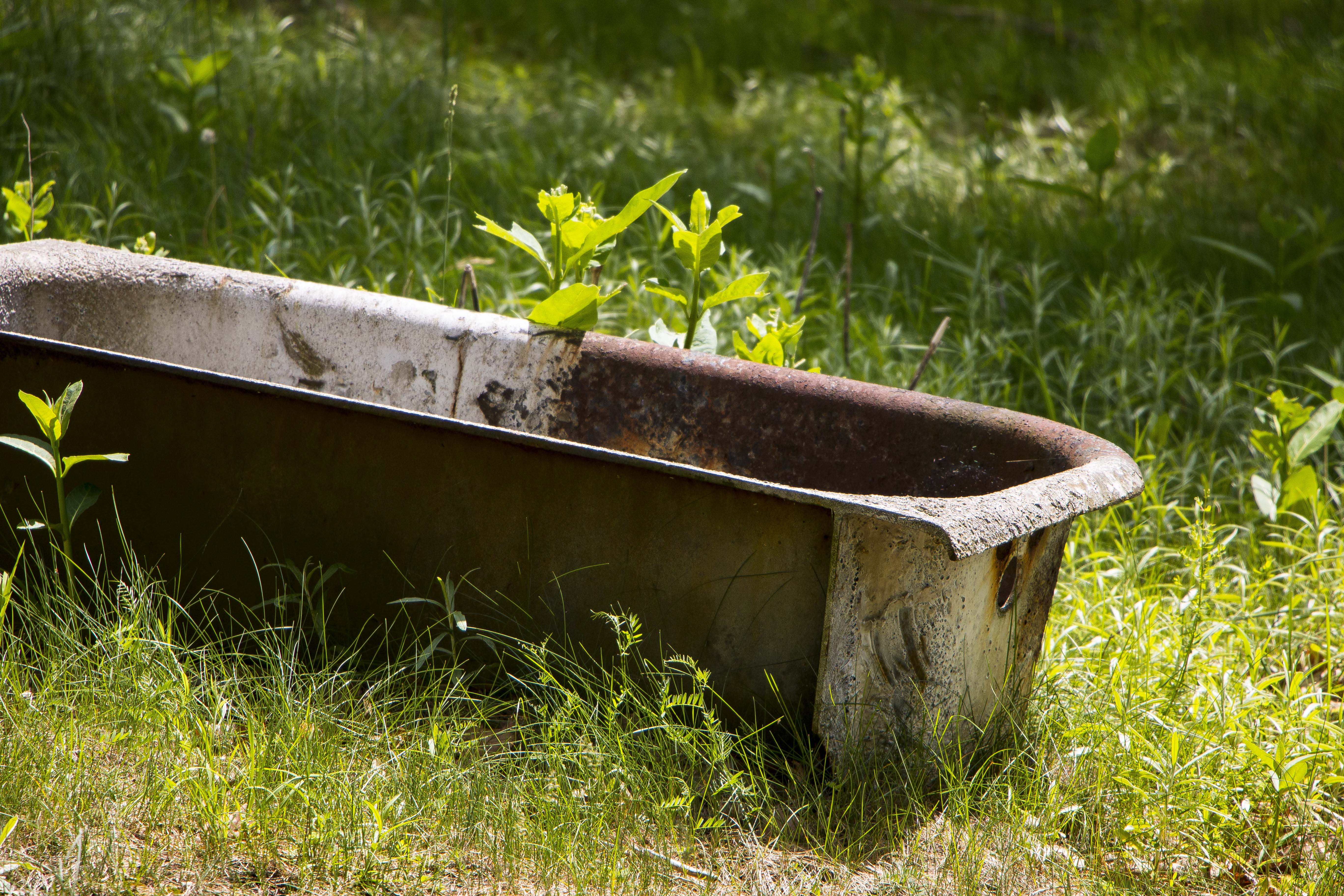 Tub in a field 1