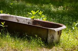 Tub in a field 1