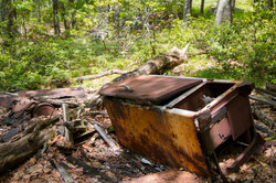 Fridge in the woods 1
