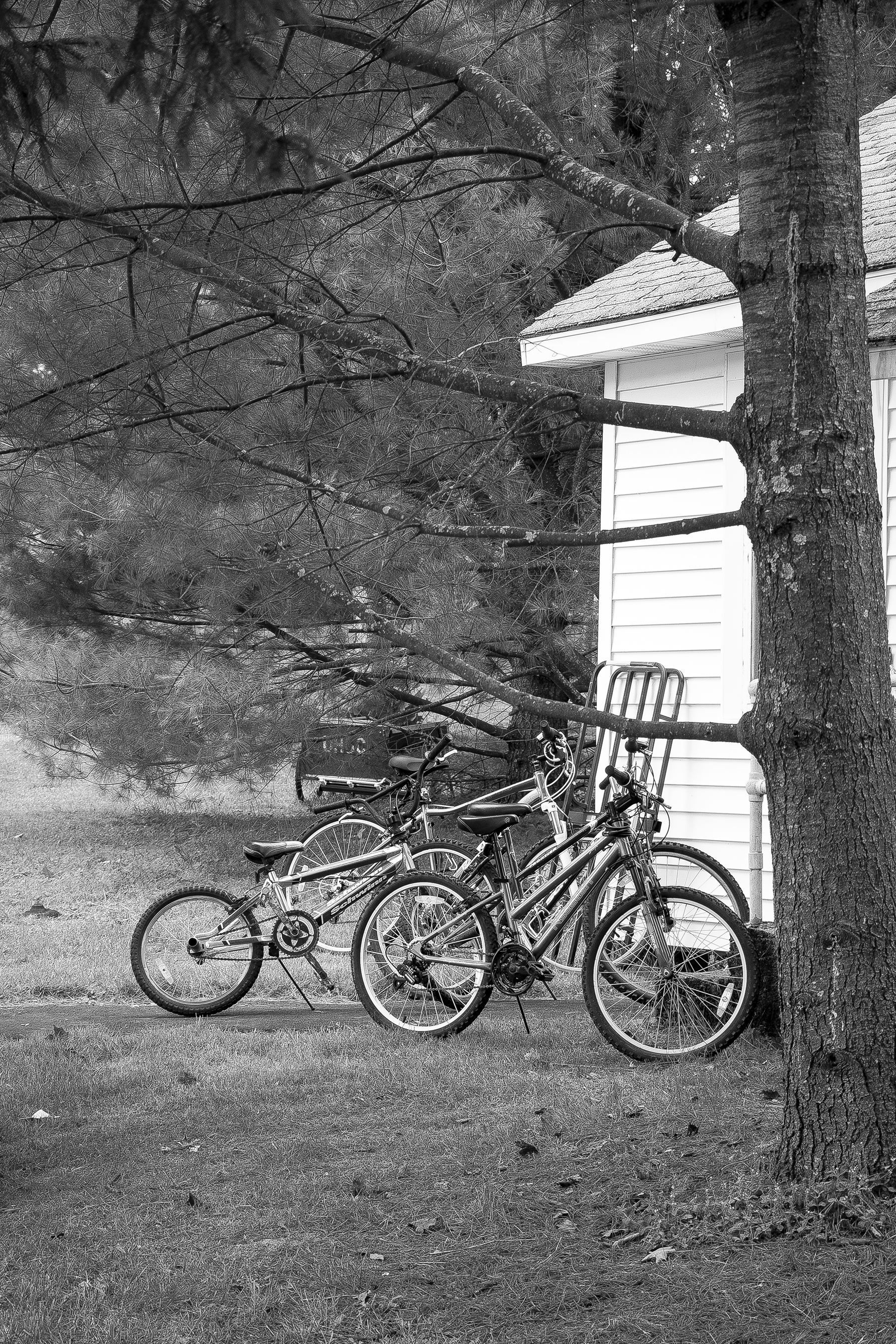 bikes bw