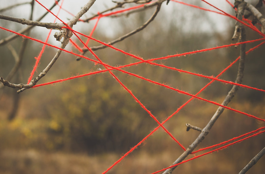 Red threads stretched on the branches of