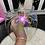 Thumbnail: Glam Visor