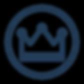 VIP Logo 1 favicon copy (1).png