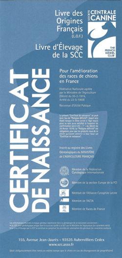 Certificat-de-naissance-couverture.jpg