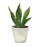 le piante.png