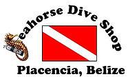 Seahorse_Logo_edited.jpg