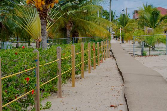 "The Famous ""Placencia Sidewalk"""