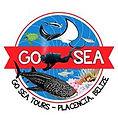 GoSea_Logo.jpg