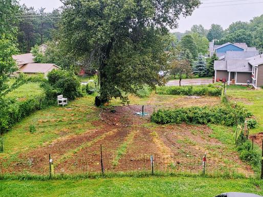 Ode to My Garden: