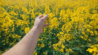 Farmer's day - POV Commercial