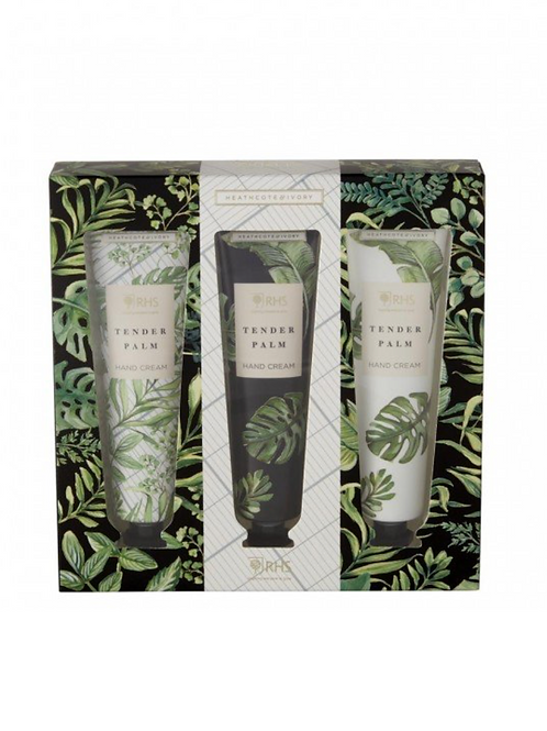 RHS Tender Palms Gift Set of 3 Hand Lotion