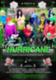 Hurricane Poster 70x100 v7 copy.jpeg