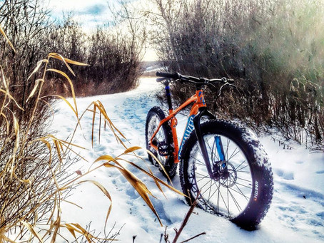 Moose Mountain Fat Bike Exploro