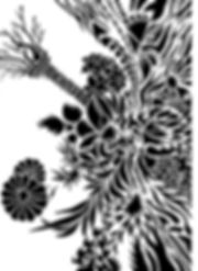 黒絵11JPG 001.jpg