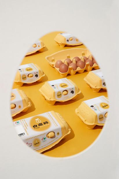 蛋盒.jpeg