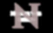Neshar Logo silver white.png