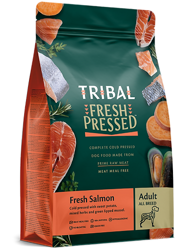 Fresh Salmon - Adult