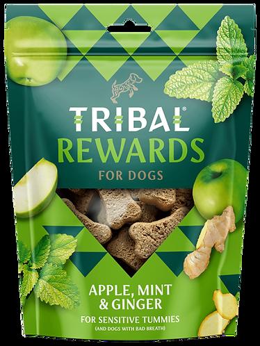Apple, Mint & Ginger Dog Biscuits