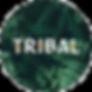 Tribal%20pet%20foods_edited.png