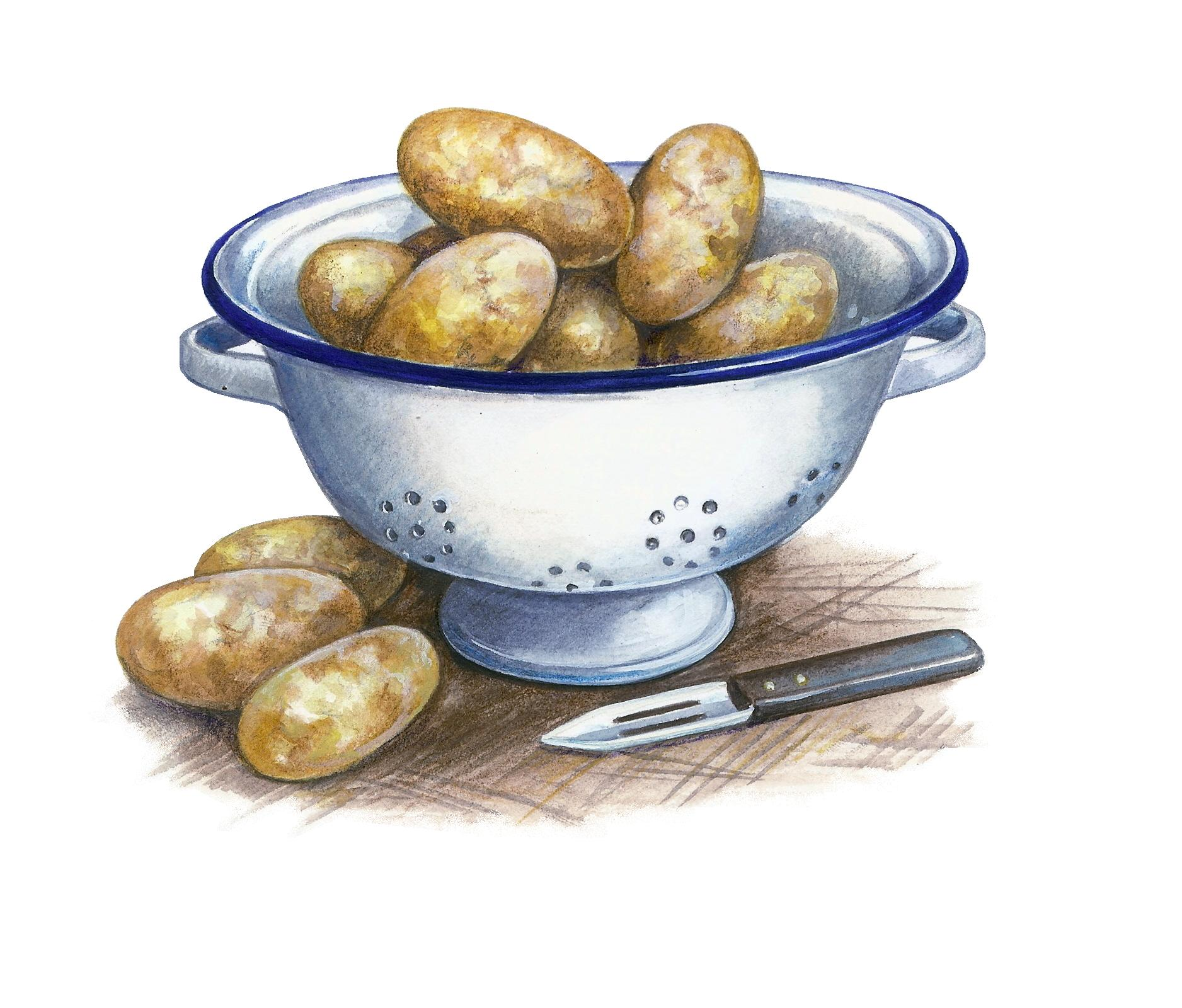 Jersey Royal Potatoes Artwork