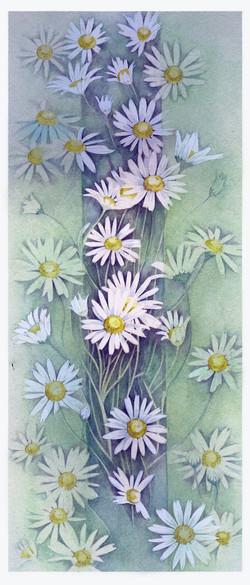 Watercolour+Daises