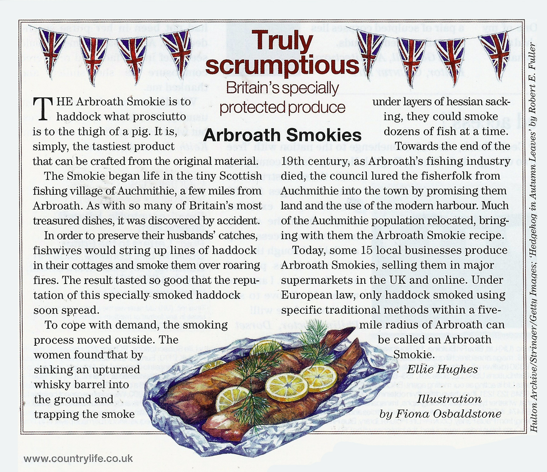 Arbroath Smokies Mag