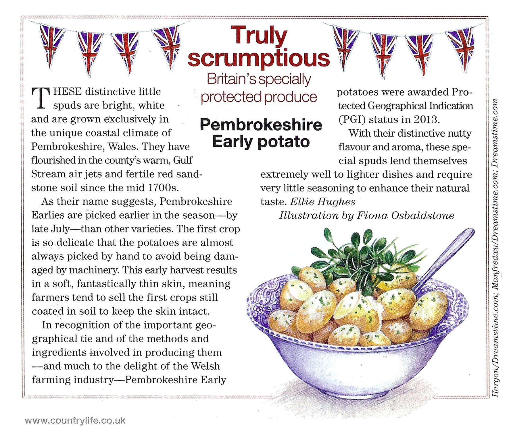 Pembrokeshire Potatoe Mag