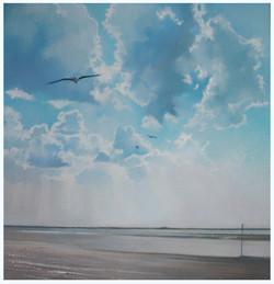 Seagull over Burnham.
