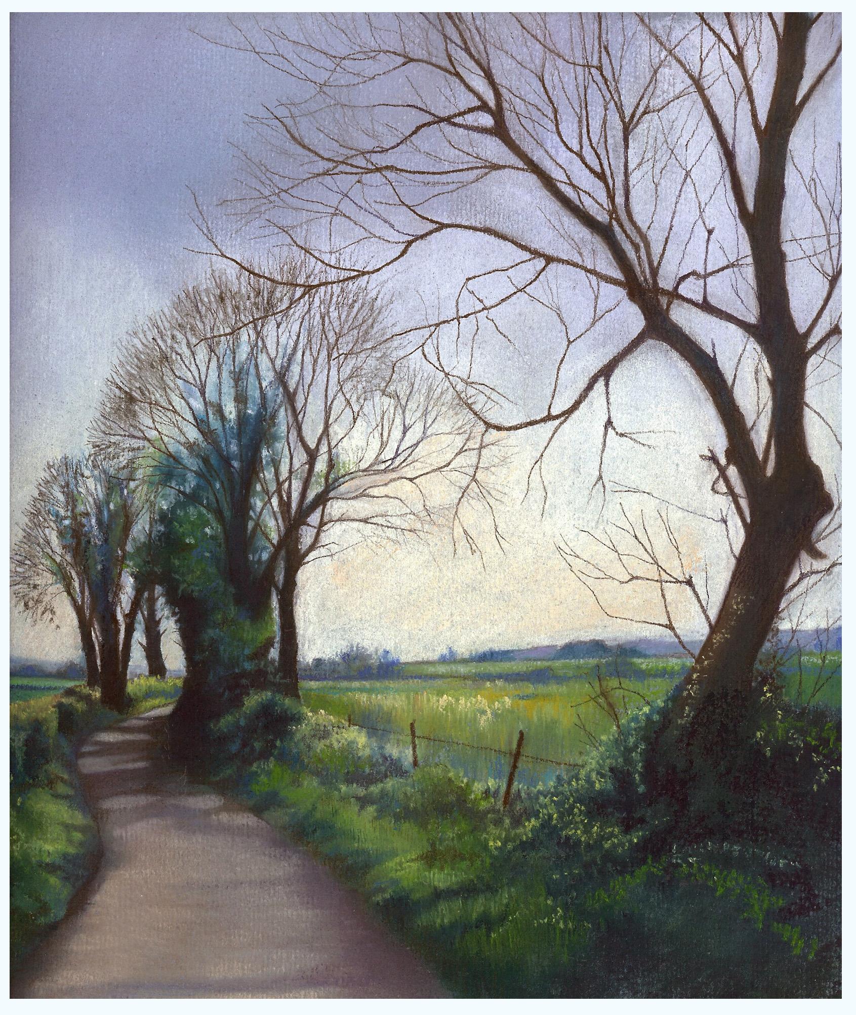 Dorset Lane.