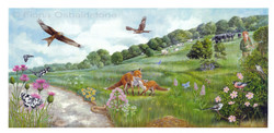 Chalk Downland Illustration