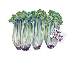 Fenland Celery Artwork