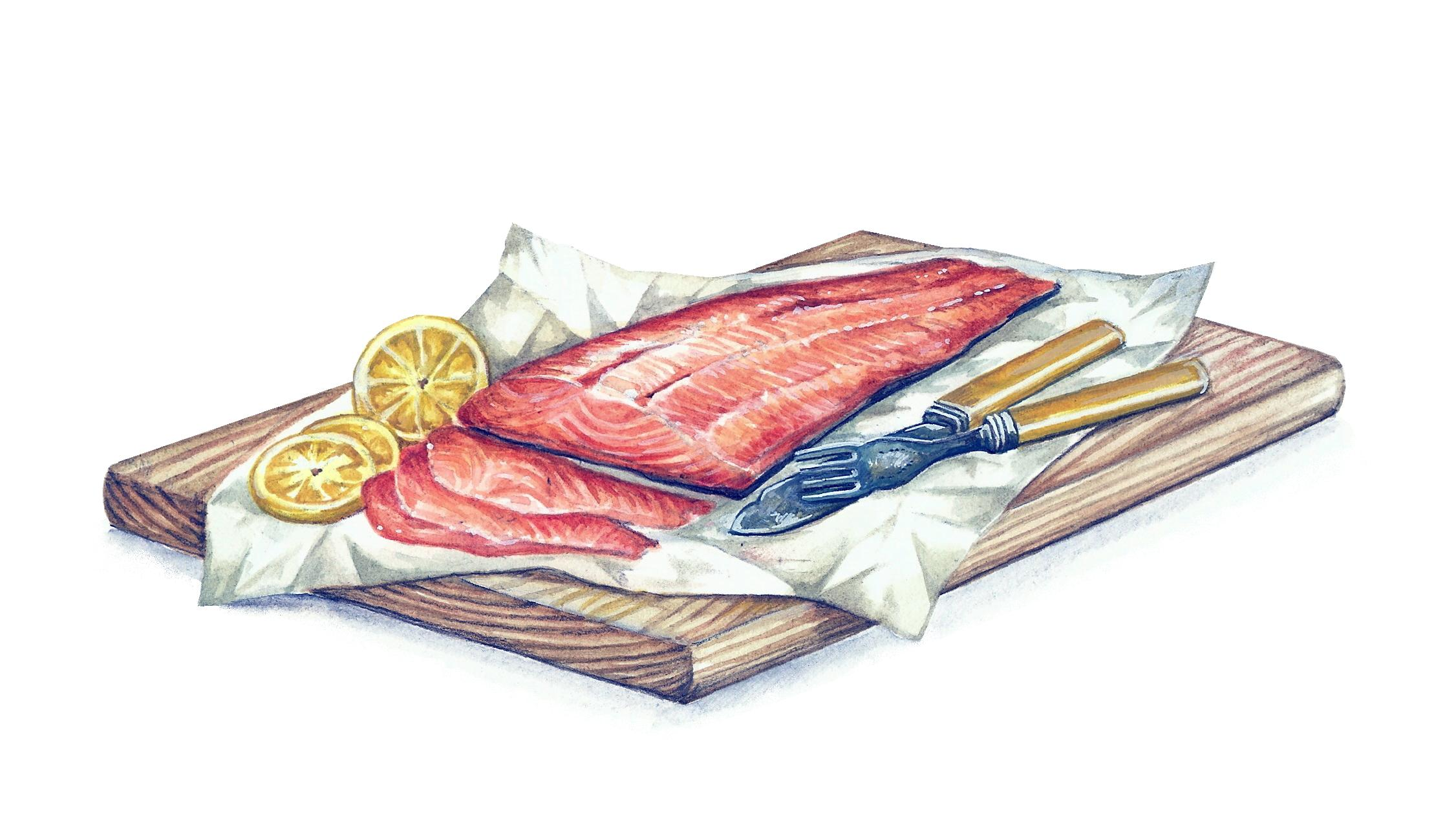 Welsh Salmon Artwork